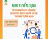MSD tuyển dụng Tư vấn nghiên cứu xây dựng Bộ Quy tắc ứng xử bảo vệ trẻ em trên môi trường mạng